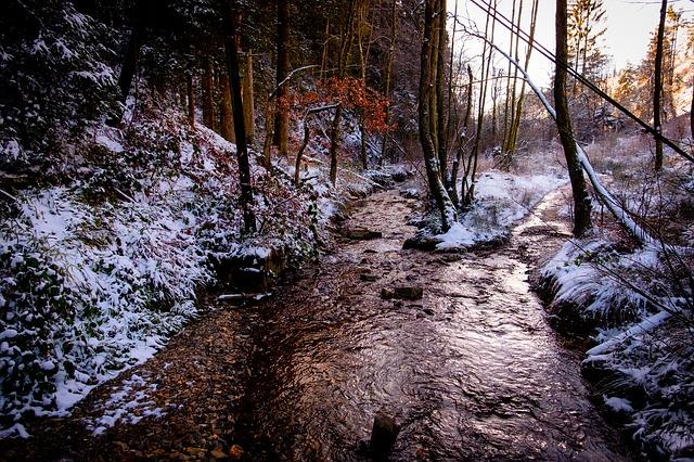 Balade guidée d'hiver aux pieds des Fagnes