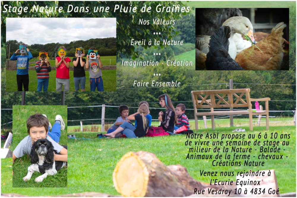 "Stage Nature ""Entre Chiens & Loups"""